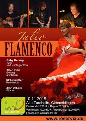 Bild: Jaleo Flamenco