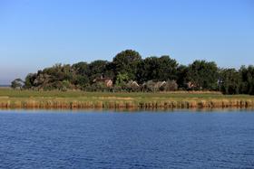 Nationalparktage Zingst - Vogelschutz-Insel Kirr hautnah erleben