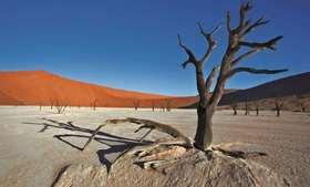 NAMIBIA - Leben in extremer Landschaft