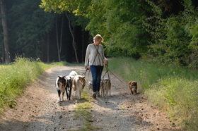 Bild: Katharina von der Leyen - Die Sprache der Hunde