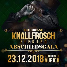 Bild: Die Knallfrosch Elektro Abschiedsgala inkl. Aftershowparty in der Tanzbar - 10 Jahre Korn, Chaos und Katastrophen