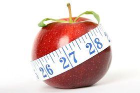 Vortrag über Ernährung & Ernährungsgewohnheiten - Workshop