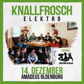 Bild: Knallfrosch Elektro + Band ohne Anspruch - Live im Amadeus