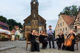 Bild: Konzert für Streichquartett - Elblandphilharmonie Sachsen