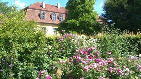 Bild: Gartentag mit dem Rossini-Quartett im Schlossgarten Kleßen - Gartentag im Schlossgarten Kleßen