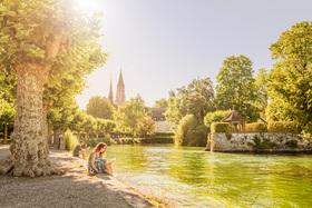 Bild: Erzählende Bäume - Stadtführung in Konstanz