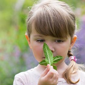 Bild: Frühlings-KreativWerkstatt - Dein kleiner