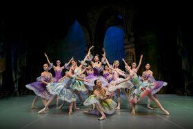 Bild: Schwanensee - Das beste Ballett-Märchen aller Zeiten