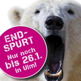 Bild: KÖRPERWELTEN der Tiere in Ulm - Frühbucherticket