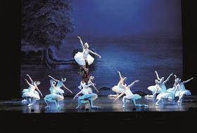 Schwanensee - getanzt vom Prager Festspiel Ballett