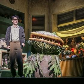 Bild: Der kleine Horrorladen - Musical von Alan Menken und Howard Ashman