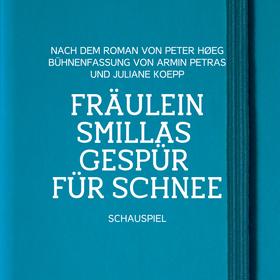 Bild: Fräulein Smillas Gespür für Schnee - Schauspiel