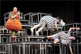 Bild: Die Nashörner