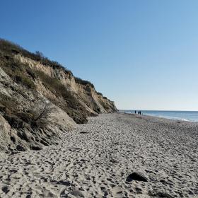 Schatzküste Ostsee - Fossilienwanderung