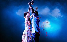 Bild: Vida! - Die Showsensation aus Argentinien: Rhythmus, Musik und Tanz