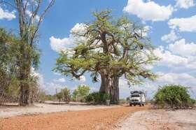 Bild: TRANSAFRIKA - durch den farbenfrohen Kontinent