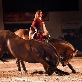 Bild: Klassik-Pferde-Gala