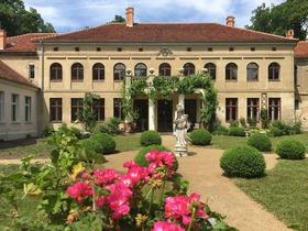 Bild: Die Kunst des Klavierspielens IV auf Schloss Rogäsen