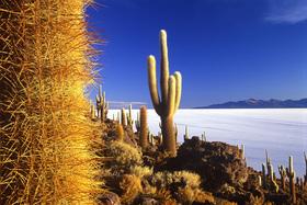 Bild: Abenteuer Anden