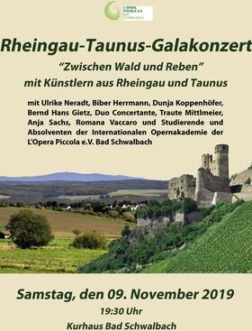 Bild: Rheingau-Taunus-Galakonzert ´Zwischen Wald und Reben´ - mit Künstlern aus Rheingau und Taunus