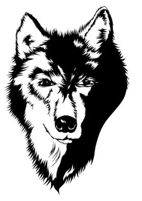 Bild: Der Steppenwolf - Hermann Hesse
