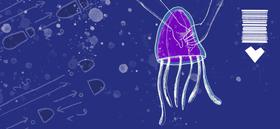 Bild: Tanz der Tiefseequalle - Jugendtheaterstück nach dem Roman von Stefanie Höfler - Uraufführung für Menschen ab 12 Jahren