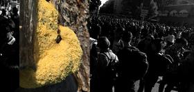 Bild: Training für politische Vorstellungskraft: Posthumane Solidaritäten
