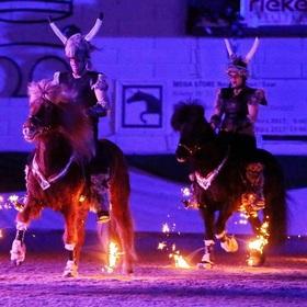 Bild: Islandpferde-Festival - im Landgestüt Zweibrücken