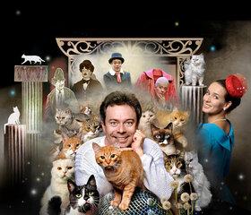 Bild: Moskauer Katzentheater - Meine lieben Katzen