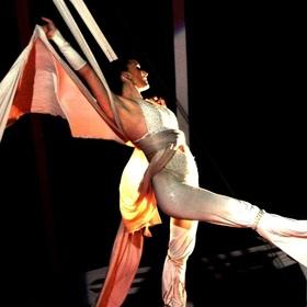 Bild: Circus Gebrüder Barelli - Dillingen an der Donau - Unsere Show 2019: