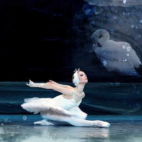 Bild: Schwanensee - Ballett in 4 Akten - Künstlerische Leitung A. Batalow