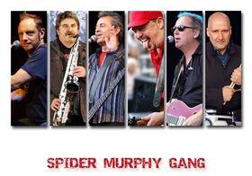 Bild: Spider Murphy Gang