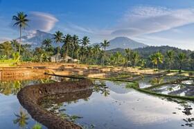 Bild: Indonesien - Java Sumatra Bali mit Steffen Hoppe