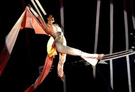 Bild: Circus Gebrüder Barelli - Landsberg - Unsere Show 2019: