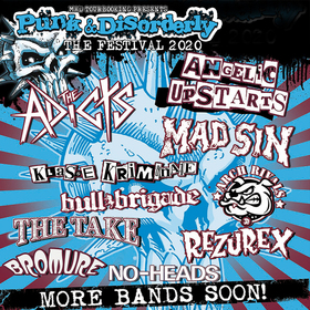 PUNK & DISORDERLY FESTIVAL 2020 - Weekend Ticket