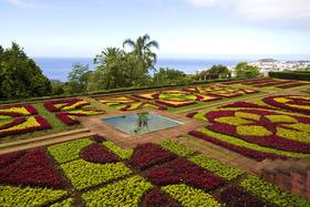 Bild: Madeira - Blühender Edelstein im Atlantik