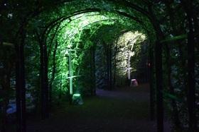 Bild: Barockgarten bei Nacht - Sinnliches in stimmungsvoller Beleuchtung