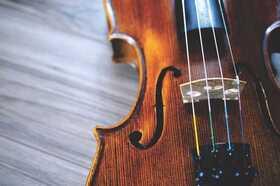 Bild: Metamorphosen - spätromantische Werke für Streichorchester