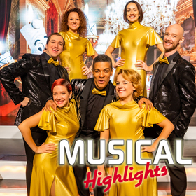 Musical Highlights Vol. 14 - Das Beste aus Musical und Film
