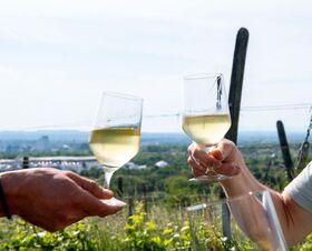 Bild: Rehberger Weg - Führung mit Weinprobe