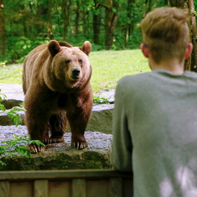 Bild: Wildpark Bad Mergentheim - Ticket 14.08.2020 | 09 - 12:30 Uhr