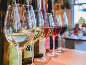 Bild: Weinabend für Genießer