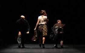Bild: Rabih Mroué & DANCE ON ENSEMBLE - Elephant & You should have seen me dancing Waltz
