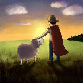 Bild: Schaf