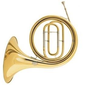 Bild: Beethovens Horn