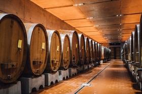 Bild: Weinerlebnis im Steinbergkeller - Kellerführung inkl. 3-er Weinverkostung