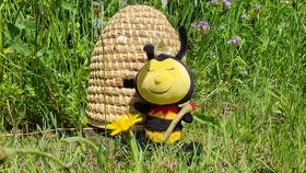 Bild: Zingst summt KIDS - Kleines Bienen Einmaleins