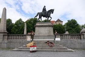 Bild: Des Kaisers letztes Pferd