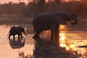 Bild: Süd-Afrika – Von Kapstadt zum Kilimanjaro - 3D-Show von und mit Stefan Schulz