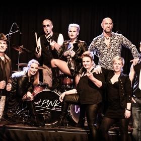 Bild: not P!NK - Pink Tribute Band